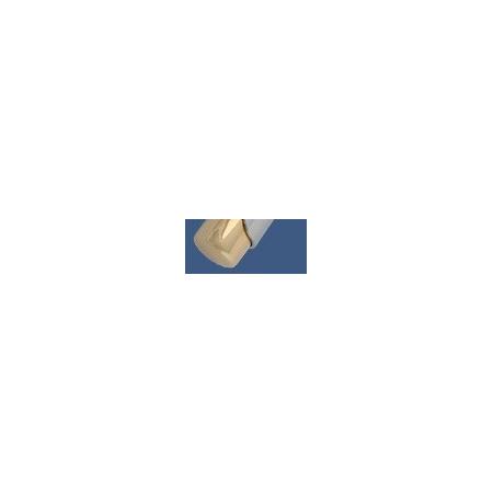 Schlosser Brillant SH Głowica termostatyczna chrom-złoto (600200010)
