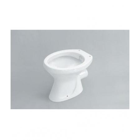 Flaminia Normale Uniwersalna miska WC/bidet z pionowym odpływem 46,5x36x40cm, biała G1051