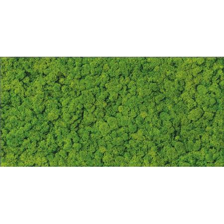 Cersanit Fresh Moss Glass Inserto Płytka ścienna 29x59 cm, zielona OD570-006