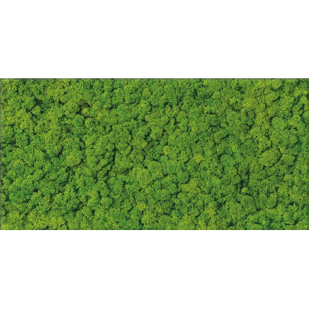 Cersanit Fresh Moss Glass Inserto Płytka ścienna 29x59 cm, zielony OD570-006