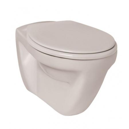 Ideal Standard Eurovit Toaleta WC podwieszana52,5x36cm z półką, biała V340301