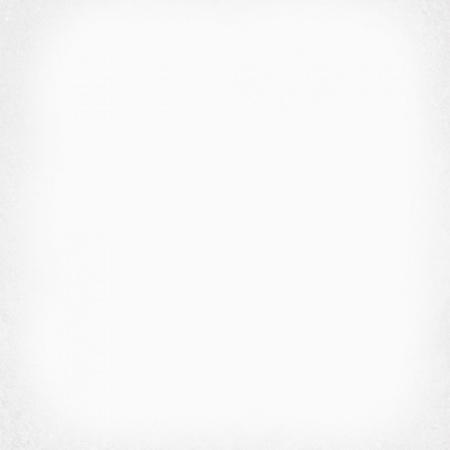 Vives 1900 Blanco Płytka podłogowa 20x20 cm gresowa, biała VIV1900BLANCO